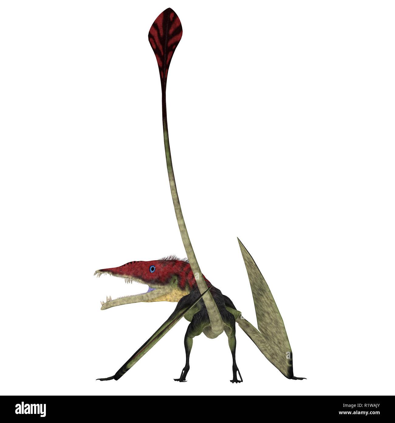 Eudimorphodon Pterosaur Tail - Eudimorphodon was a carnivorous Pterosaur bird that lived in Italy during the Triassic Period. - Stock Image