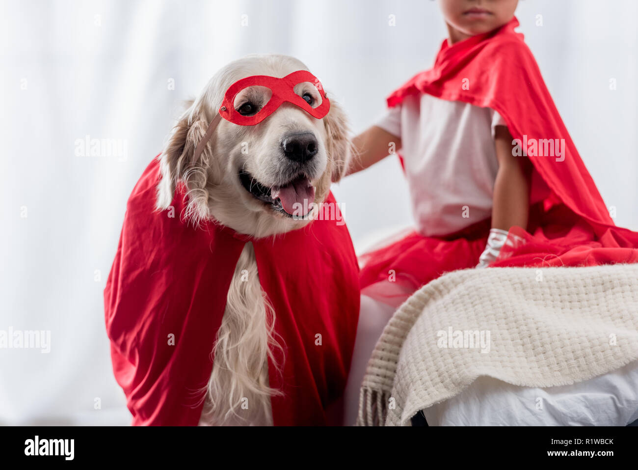 partial view of little kid with golden retriever dog in red superhero costumes - Stock Image