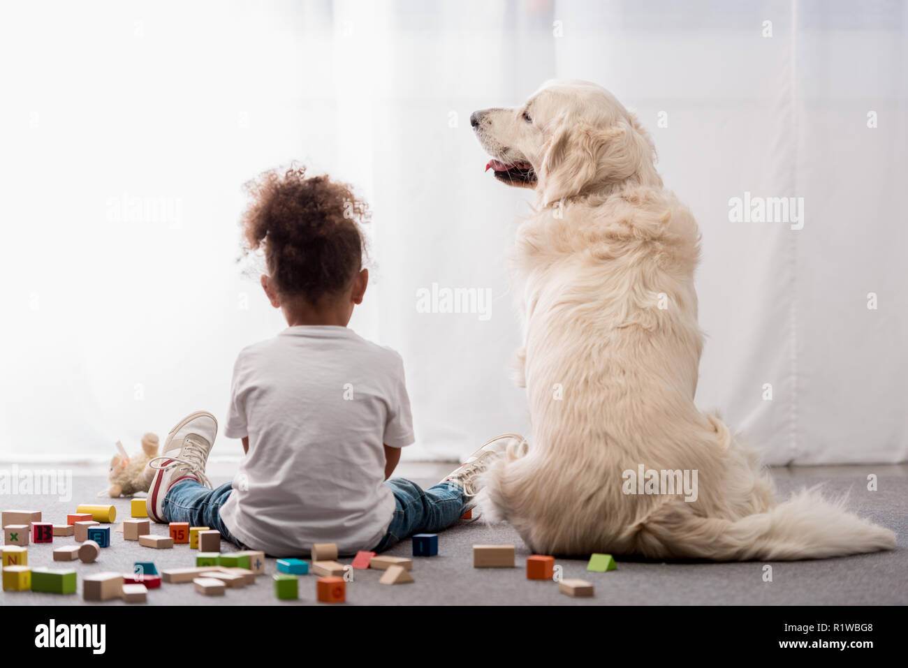 Back view of little kid in white t-shirts with happy dog surrounded by toy cubes - Stock Image