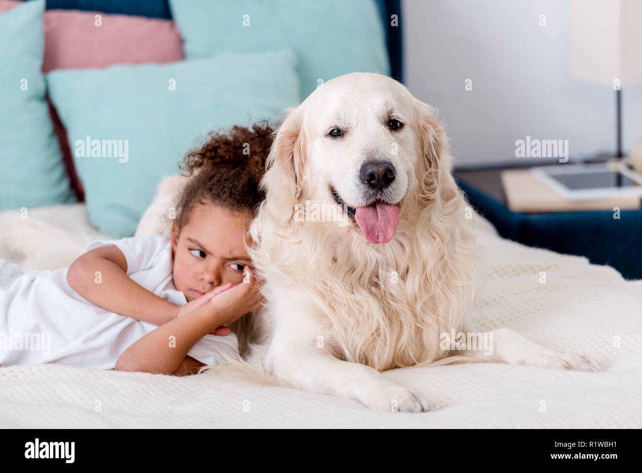 little frowned african american kid lying on bed while leaning to dog - Stock Image