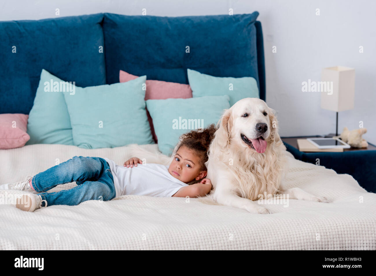 Adorable little african american kid lying on bed and leaning to happy dog - Stock Image