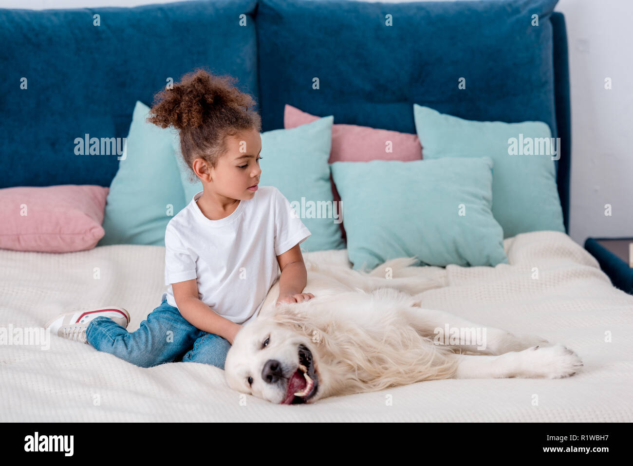 Cute  little african american kid petting dog while sitting on bed Stock Photo