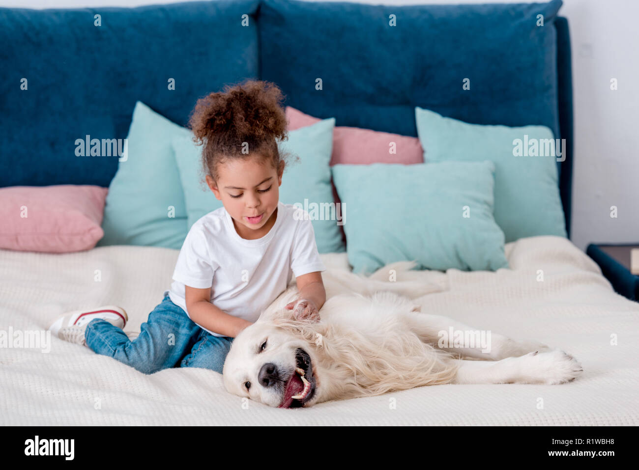 Adorable little african american kid petting happy dog while sitting on bed - Stock Image