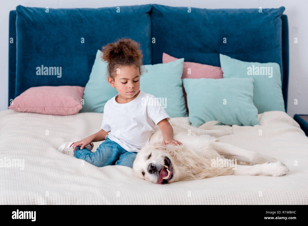 Cute  little african american kid playing with dog on bed - Stock Image