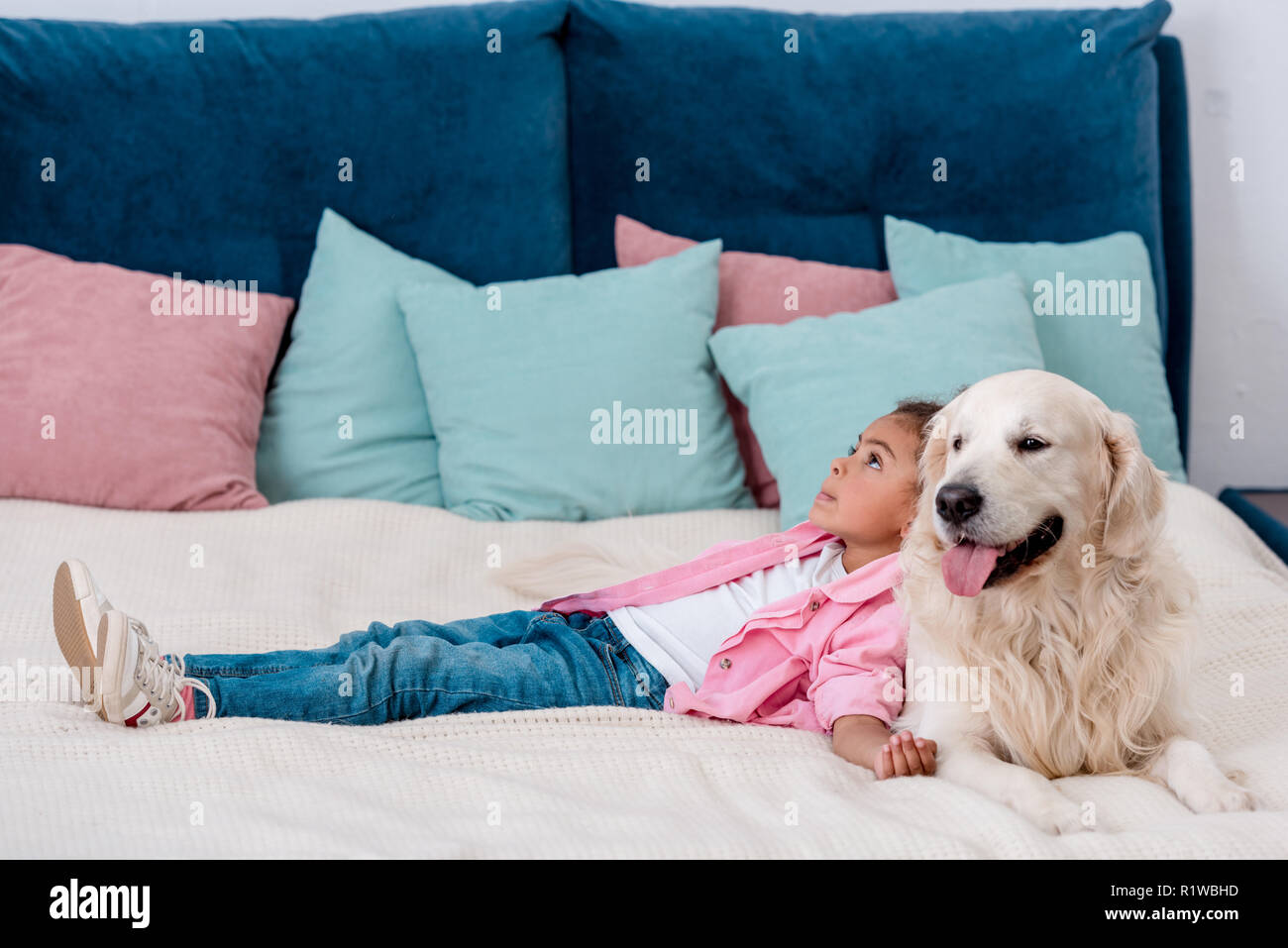 Adorable little african american kid in pink jacket lying on bed and leaning to dog - Stock Image