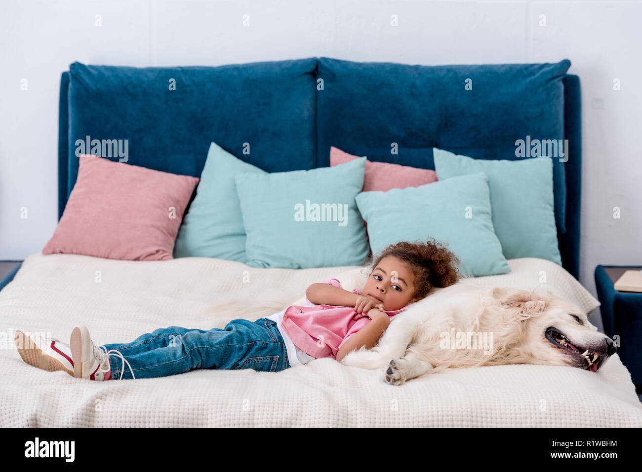 Cute african american kid in pink jacket lying on bed and leaning to dog - Stock Image