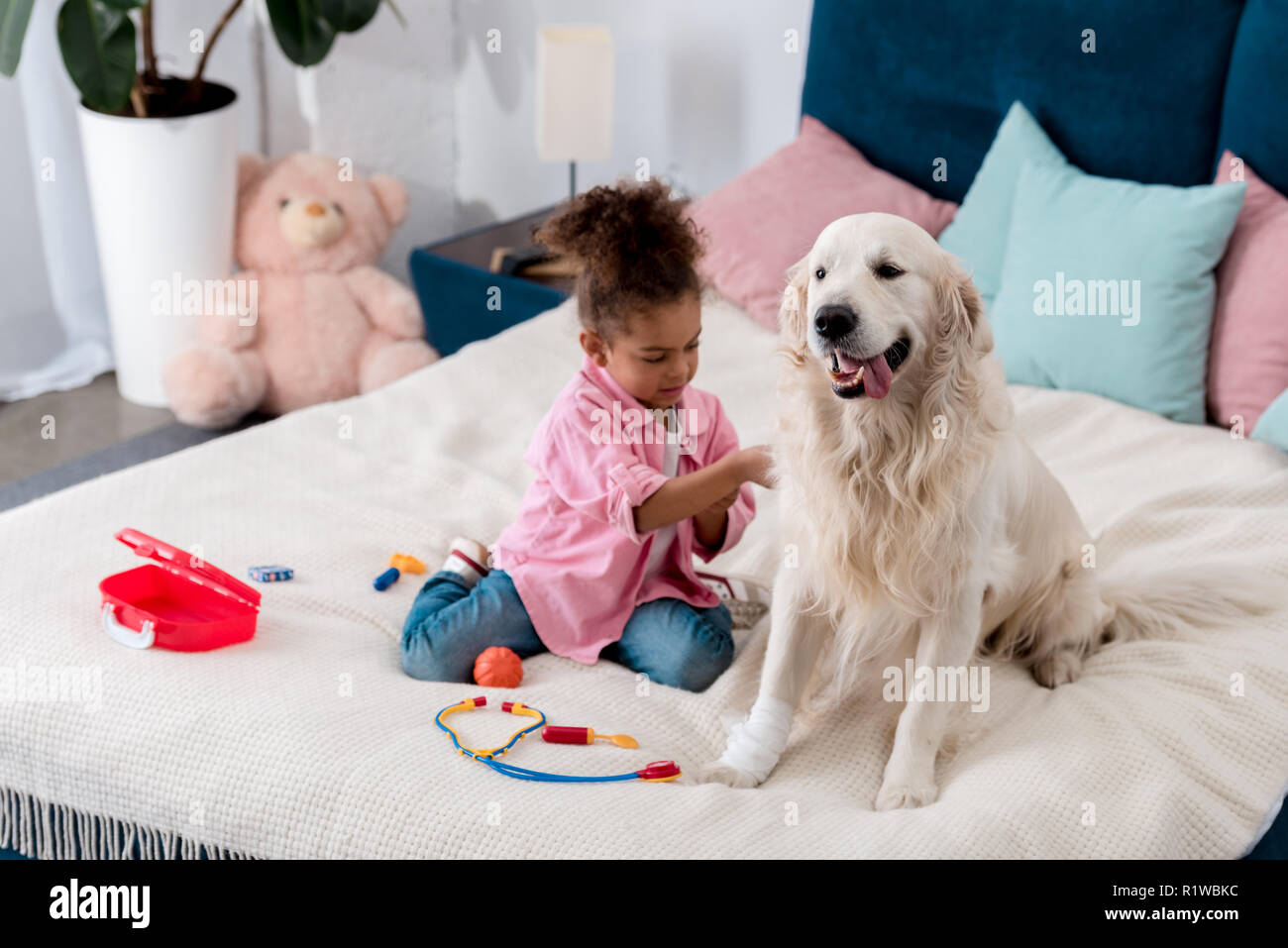 Adorable african american kid playing doctor with her golden retriever - Stock Image