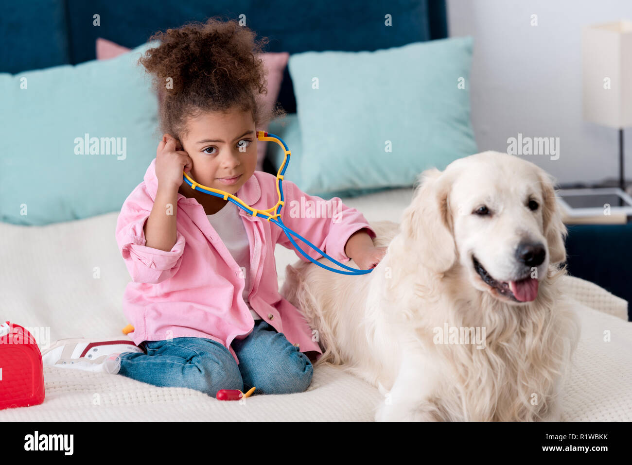 Adorable african american child playing with stethoscope and retriever - Stock Image