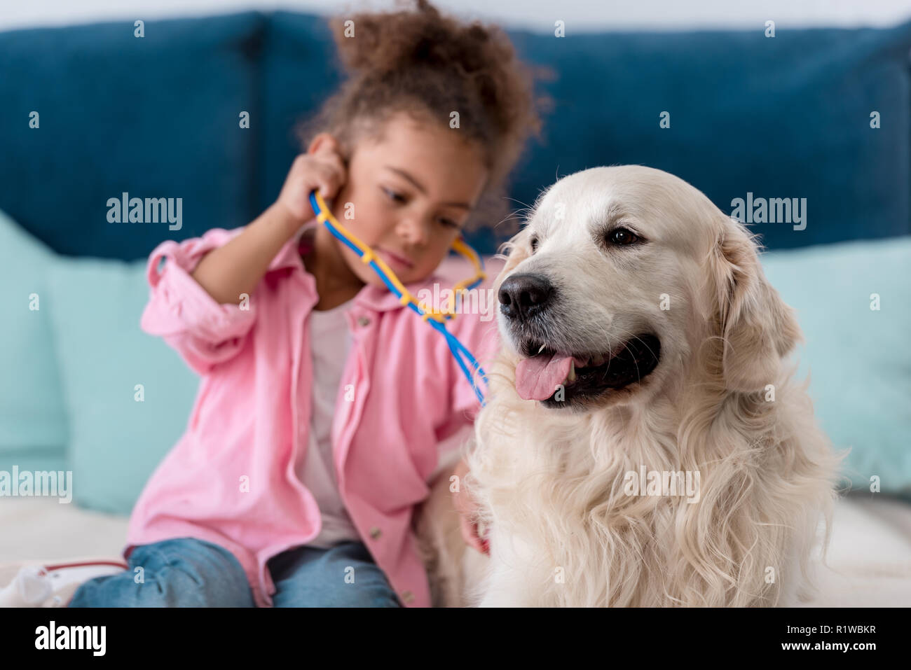 Adorable african american kid playing  with stethoscope and her retriever - Stock Image