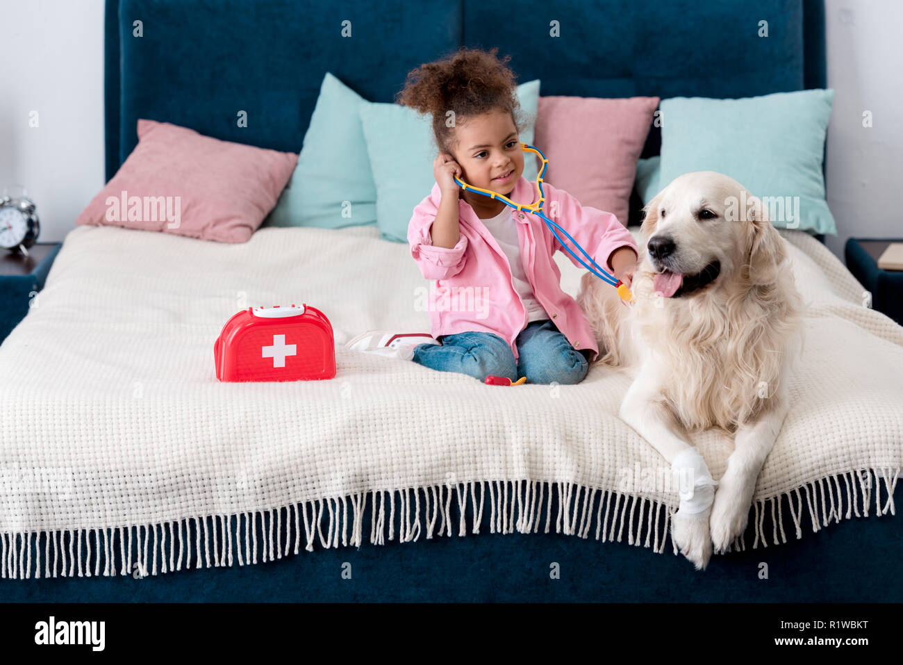 Cute african american child playing doctor with her golden retriever - Stock Image