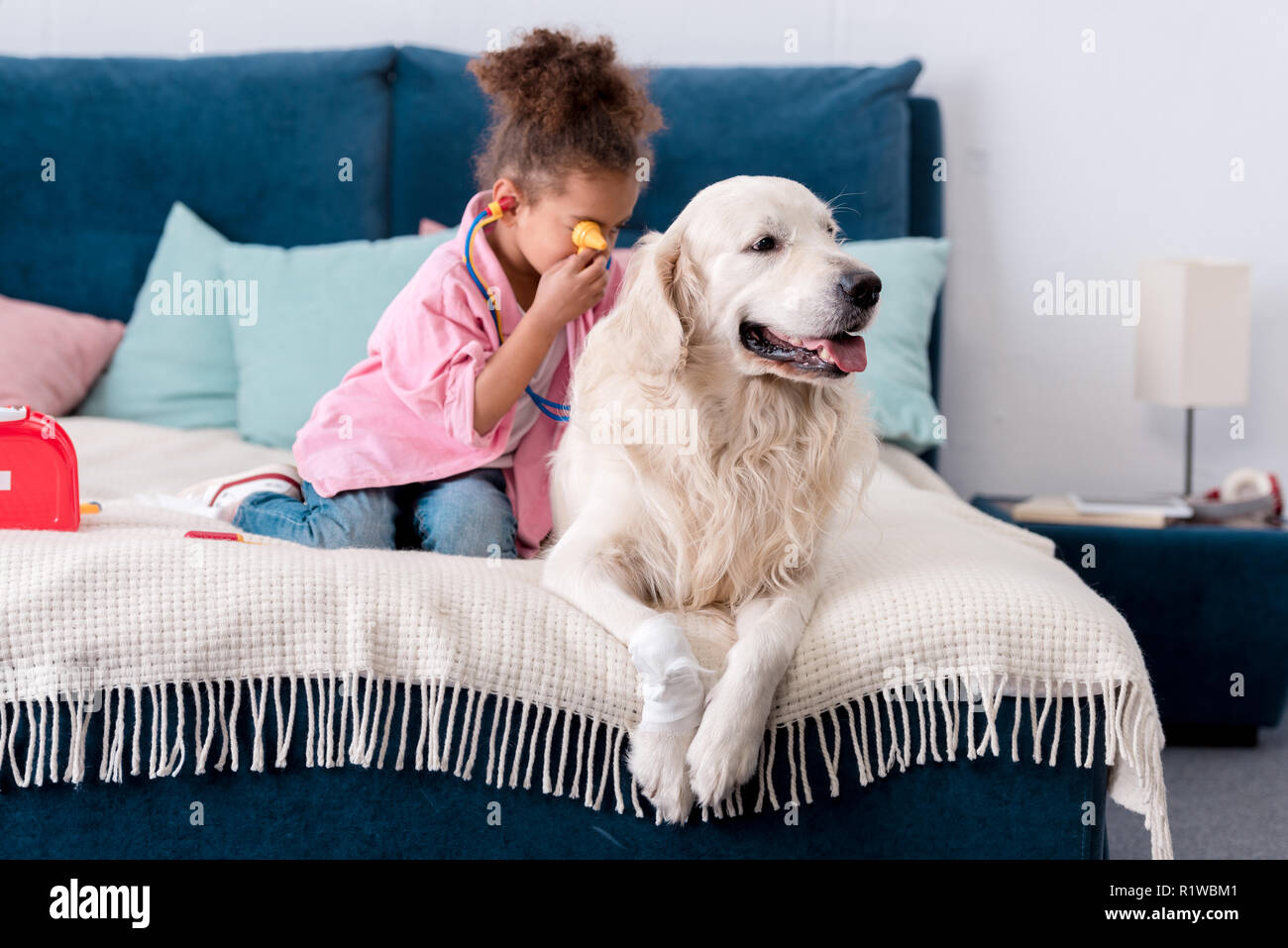 Cute  african american child playing doctor with her wounded retriever - Stock Image