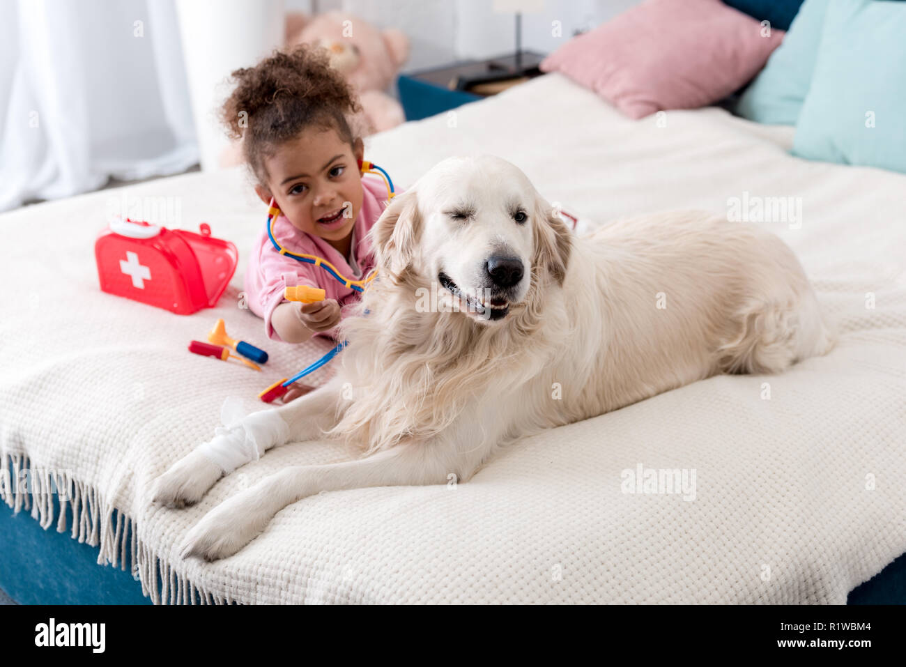 Cute african american child playing with her toys and golden retriever Stock Photo