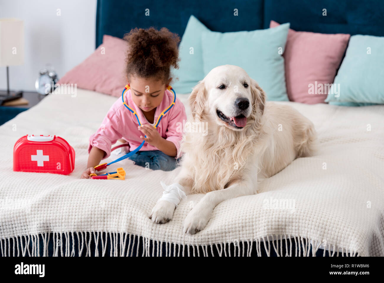 Adorable african american kid sitting on the bed with toys and retriever - Stock Image