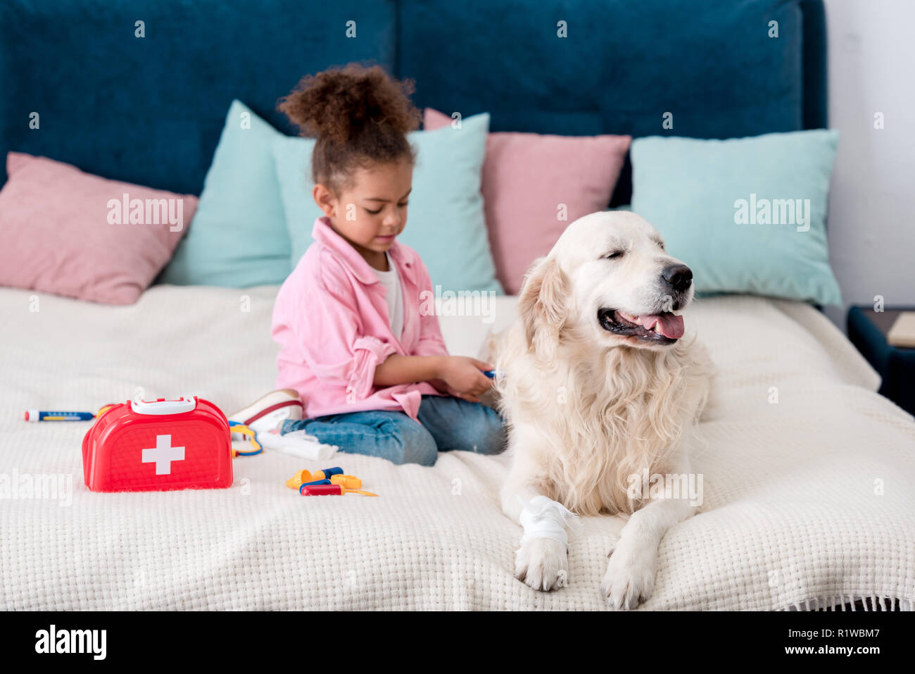Cute african american child sitting on the bed with toys near her dog - Stock Image