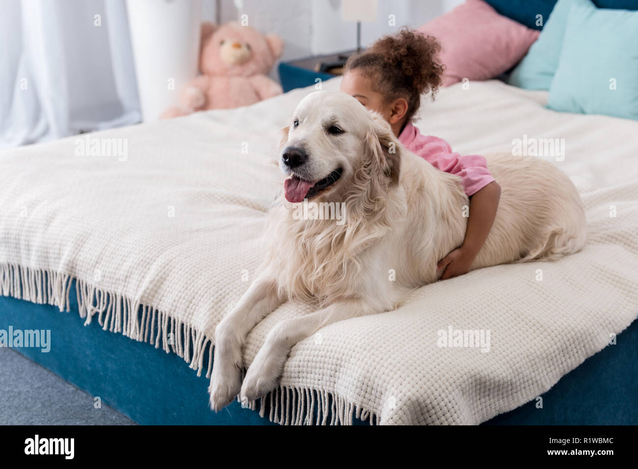 Adorable african american child sitting on the bed behind her retriever - Stock Image
