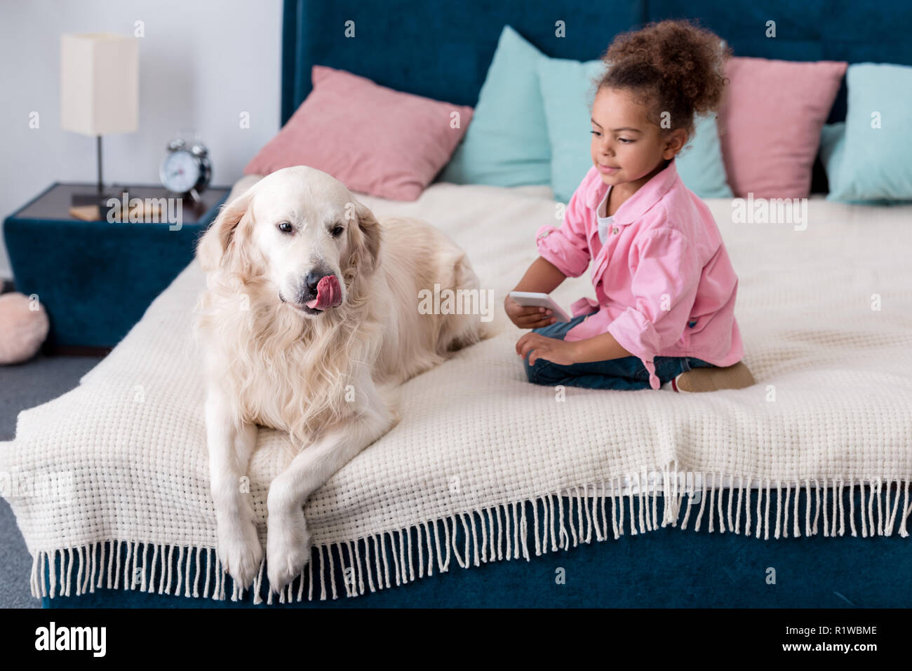 Cute african american kid sitting on the bed with smartphone and golden retriever - Stock Image