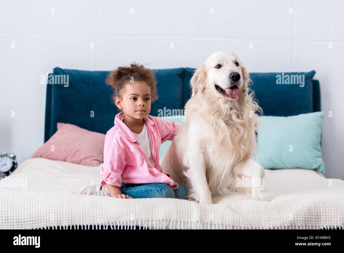 Curly african american child sitting on the bed and put her hand on dogs back - Stock Image
