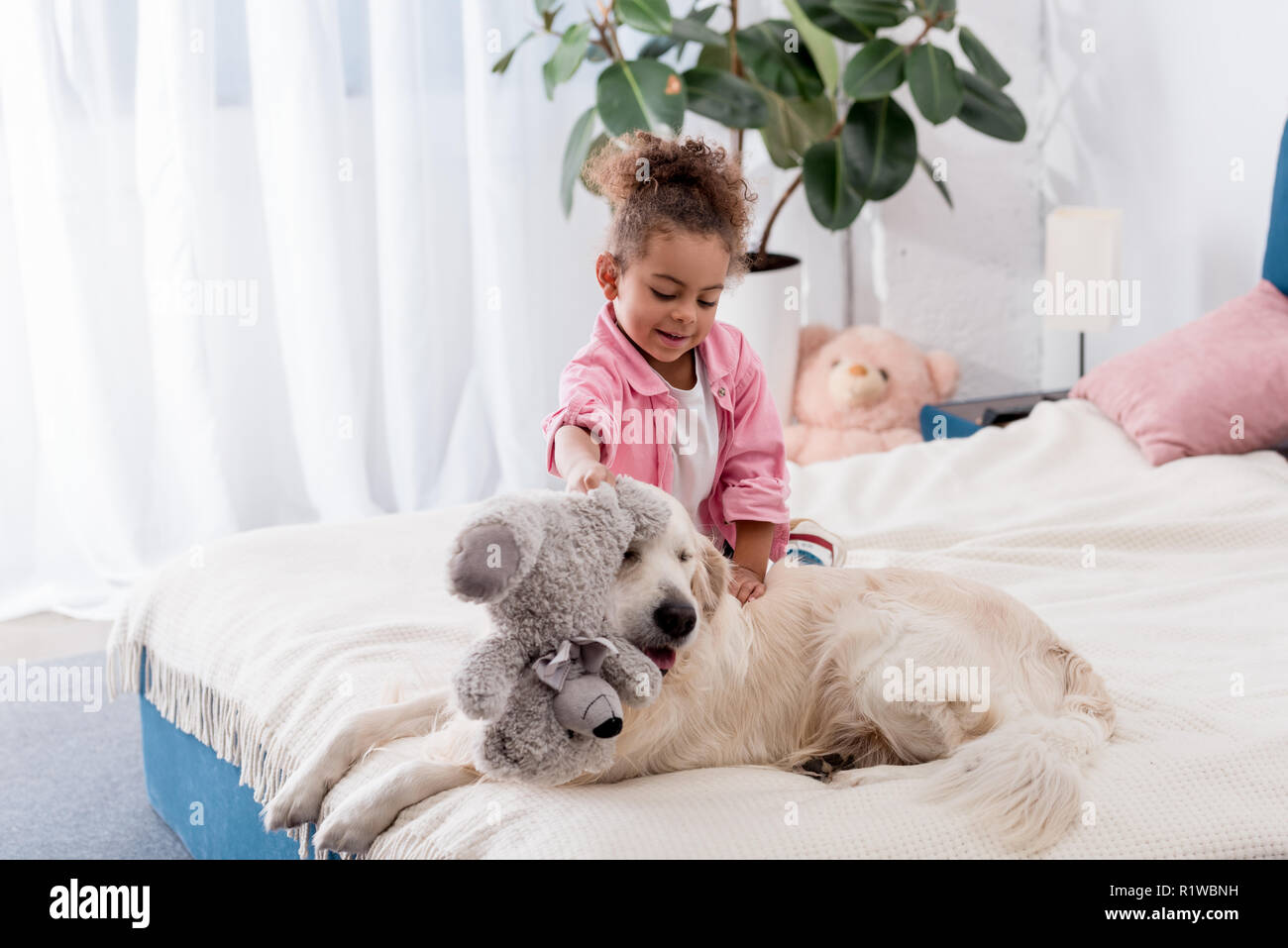 Cute african american kid sitting on the bed and playing with teddy bear and retriever - Stock Image