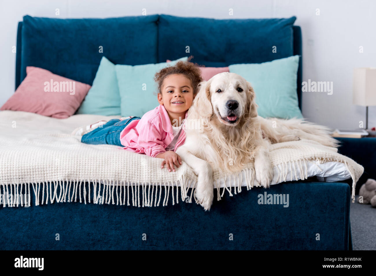 Curly african american kid lying on the bed with her golden retriever - Stock Image