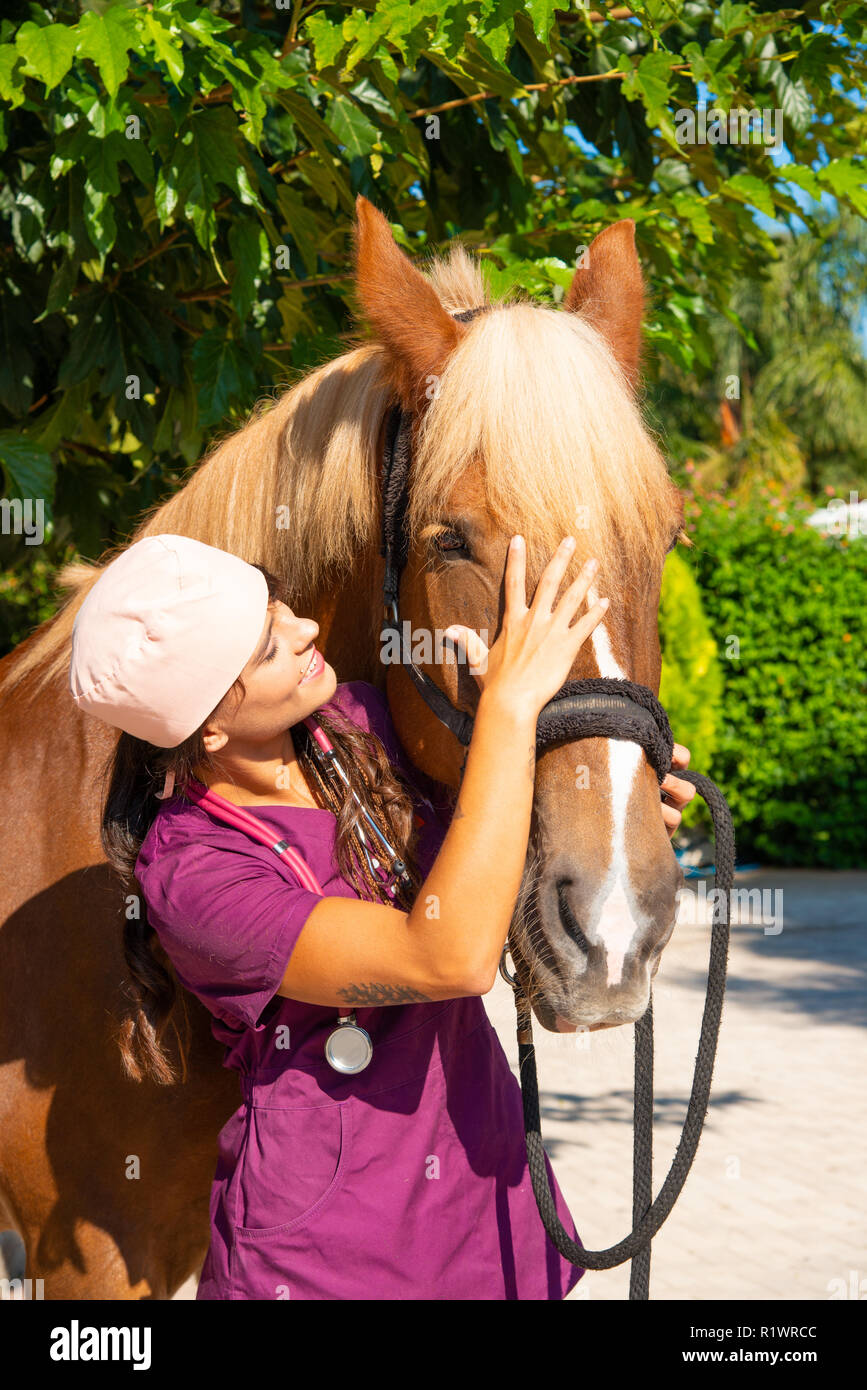 Smiling young female veterinarian doctor portrait with brown horse outdoor. Equestrian healthcare medical concept. - Stock Image