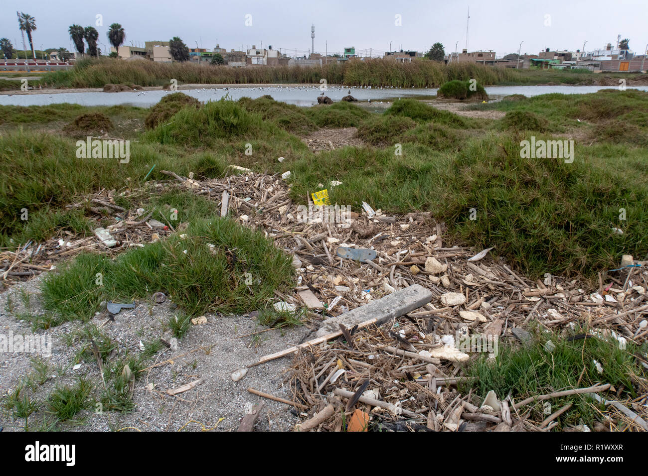 Pisco, Peru - October 19 2018: Plastics and rubbish washed up from the sea onto beaches in Peru causing environmental issues - Stock Image
