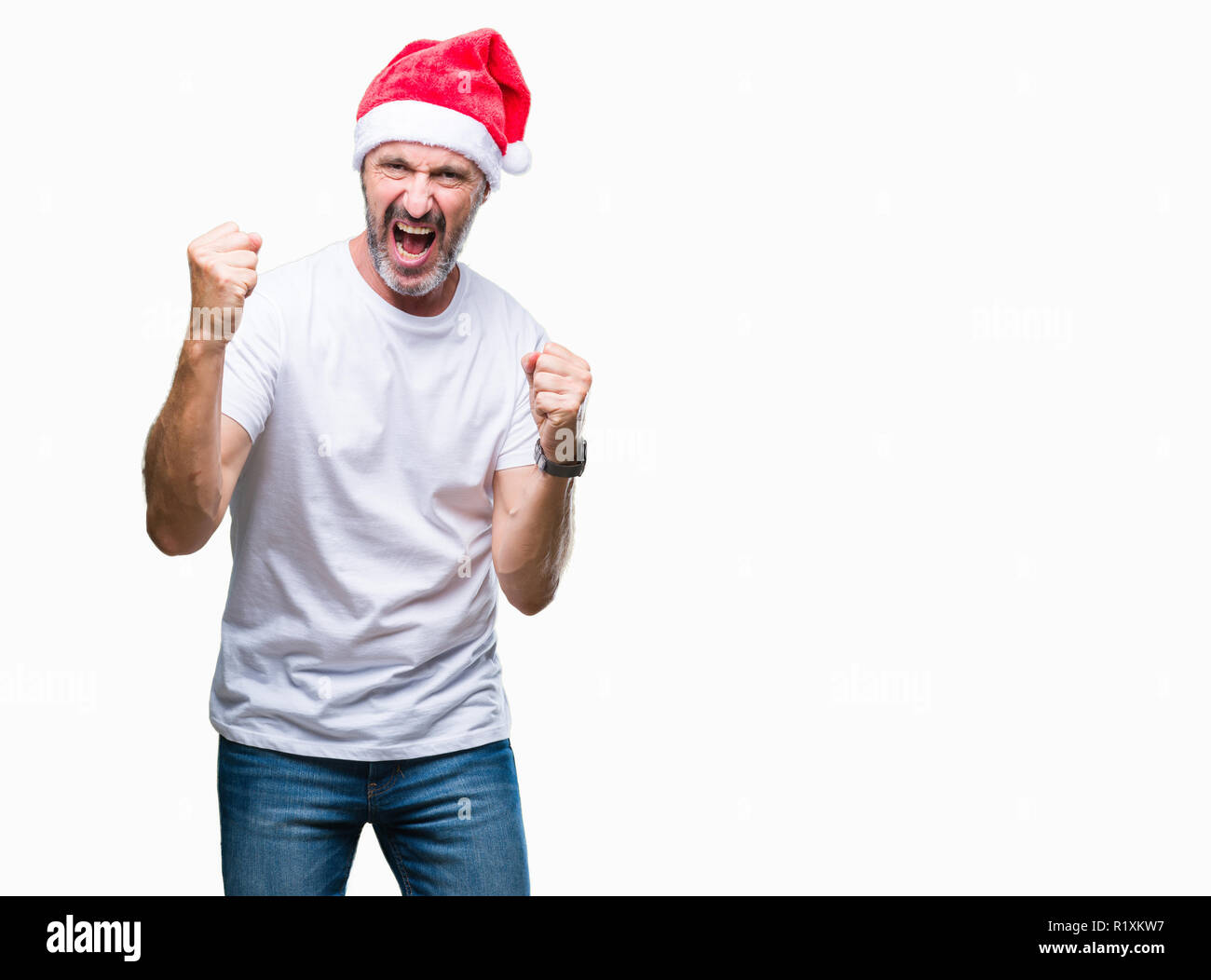 Middle age hoary senior man wearing christmas hat over isolated background very happy and excited doing winner gesture with arms raised, smiling and s - Stock Image
