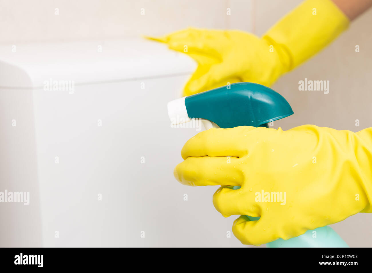 Selective focus picture of disinfectant spray held by person wearing sanitary gloves cleaning wc - Stock Image
