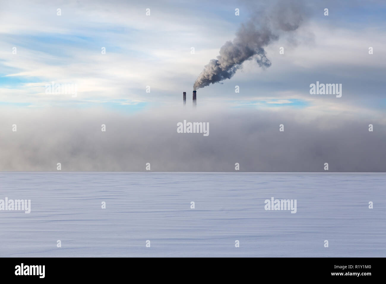 Smoke pipes in heavy fog in winter on a background cloudy sky - Stock Image