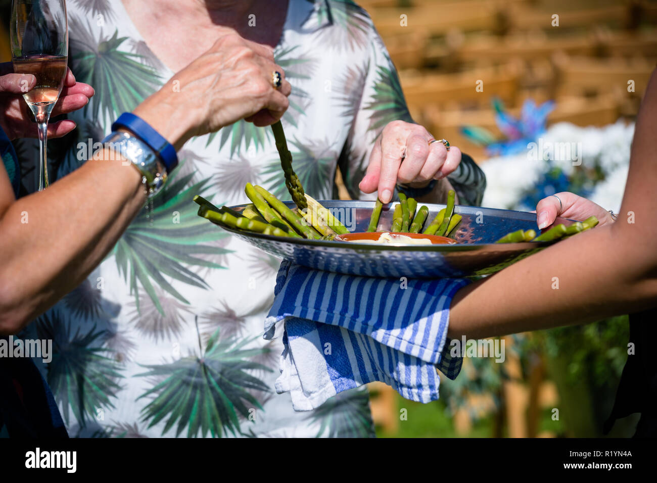 Garden Wedding celebration in England UK during the summer of 2018 - Stock Image