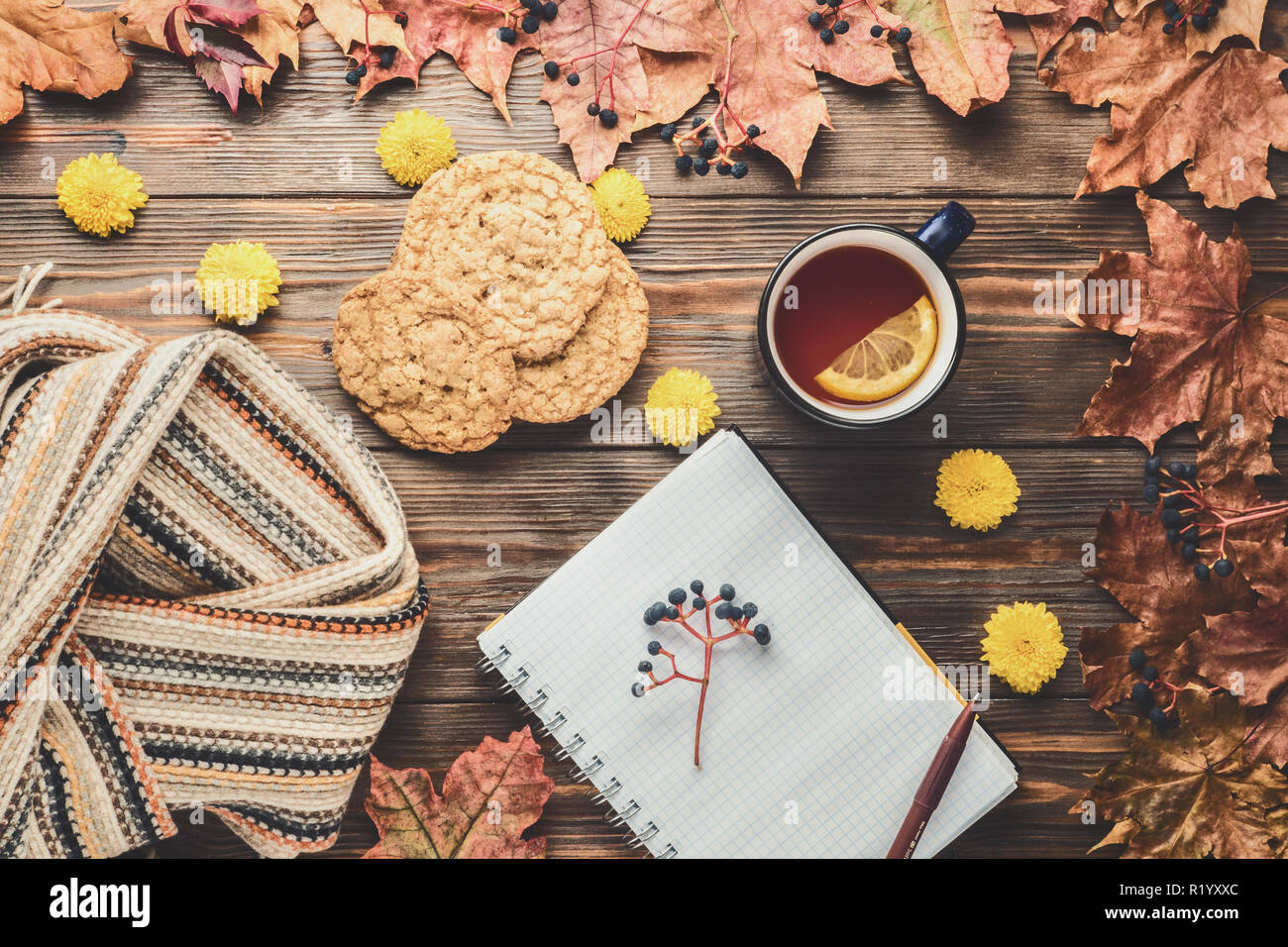 Autumn fashion seasonal concept Scandinavian knitted scarf cup hot black tea coffee homemade oatmeal cookies Fall fallen maple leaves on wooden table with notebook pen Flat lay Top view vintage style. Stock Photo