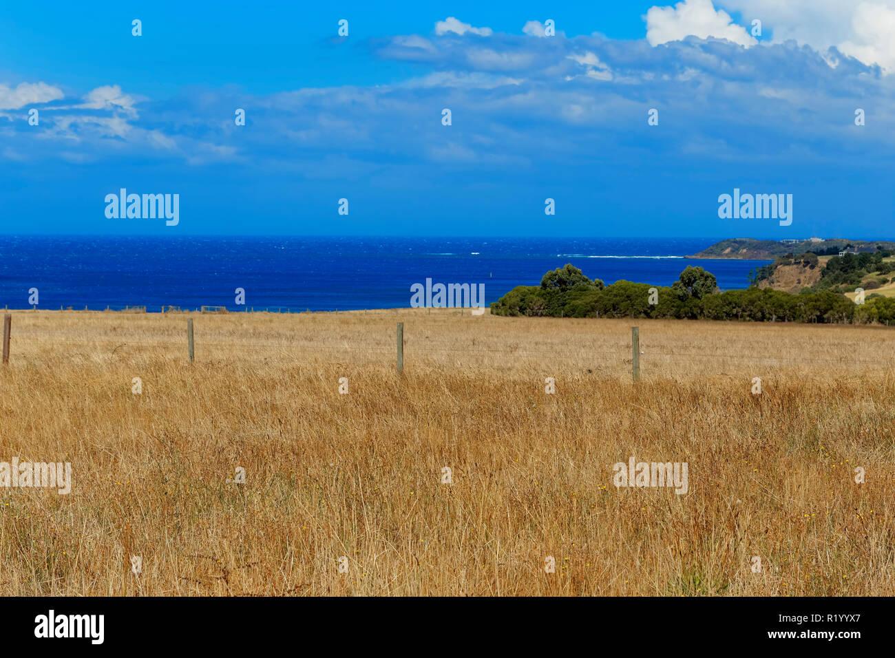 Pastoral Land, Flinders, Mornington Peninsula, Victoria, Australia - Stock Image