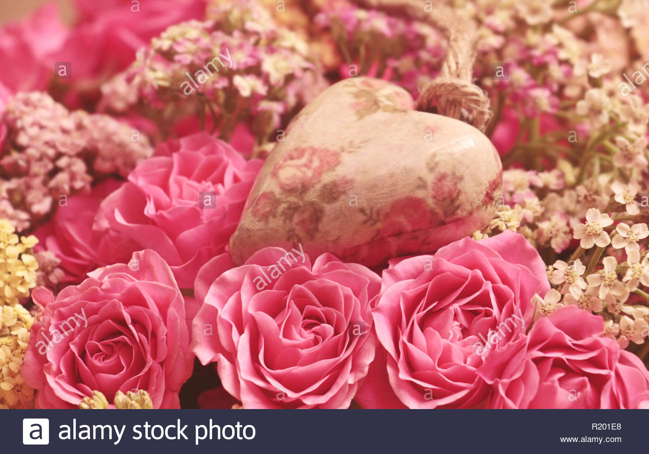 Everyone's favorite flower, the rose, has different meanings depending on the hue. - Stock Image