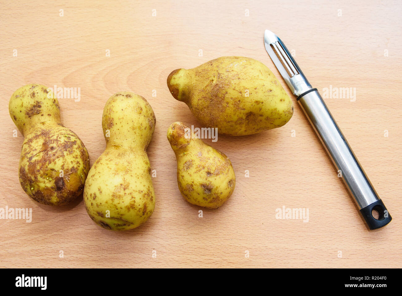 Odd shaped potatoes. Non standard shape food. Wonky veg. Imperfect potatoes.  Imperfect substandard produce on wood work surface. Space for copy - Stock Image