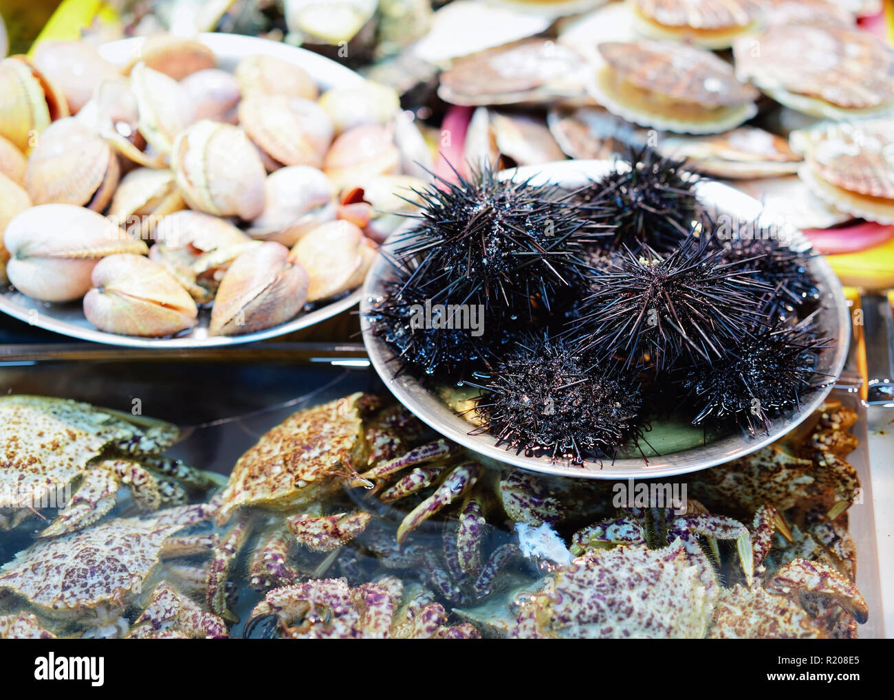 Sale of Fresh sea urchins, crabs and clams in Jagalchi famous fish market in Busan, South Korea Stock Photo