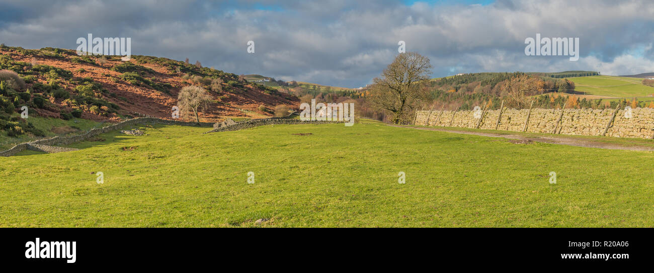 North Pennines AONB panoramic landscape, Holwick Head farm, Upper Teesdale in strong late autumn sunshine and a dramatic sky - Stock Image
