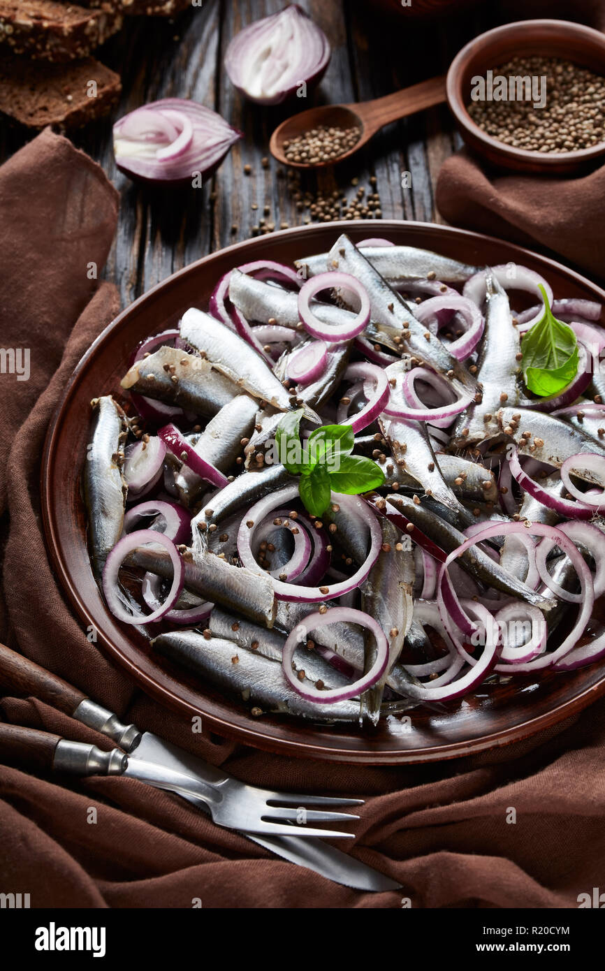 salted sprats marinated with red onion rings on an earthenware plate  with olives, coriander seeds in bowls and rye sliced bread on an old rustic wood - Stock Image