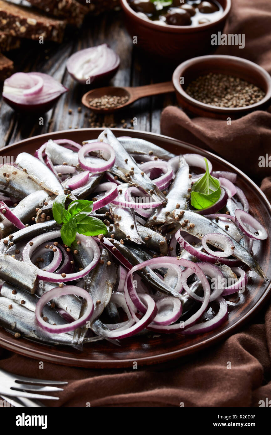 salted sprats marinated with red onion rings on an earthenware plate  coriander seeds, brown cloth, fork and knife on an old rustic wooden table, vert - Stock Image