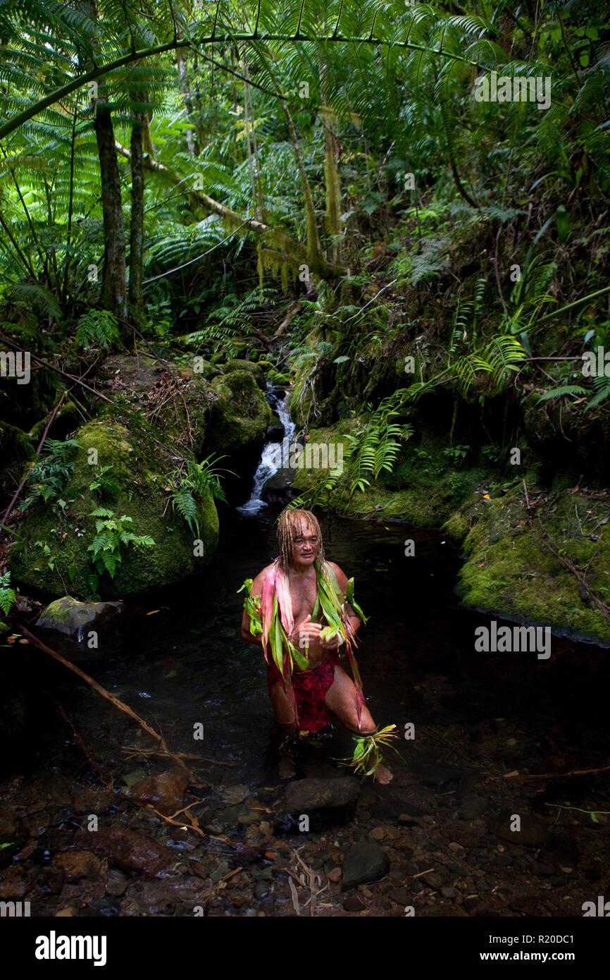 The enigmatic forest spirit, traditional herbalist and trek guide Pa, of Pa's Treks, on a cross island trek across Rarotonga Island. - Stock Image