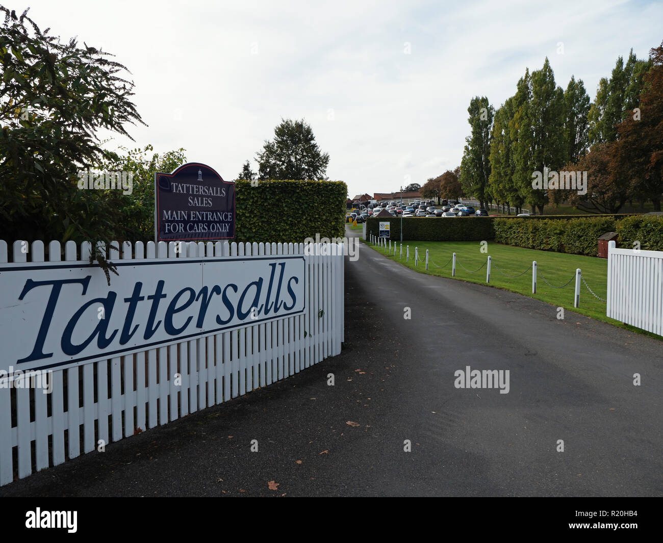 Tattersalls Newmarket Headquarters - World famous bloodstock auction house. Tattersalls Auctioneers, Terrace House, Newmarket, Suffolk, England - Stock Image