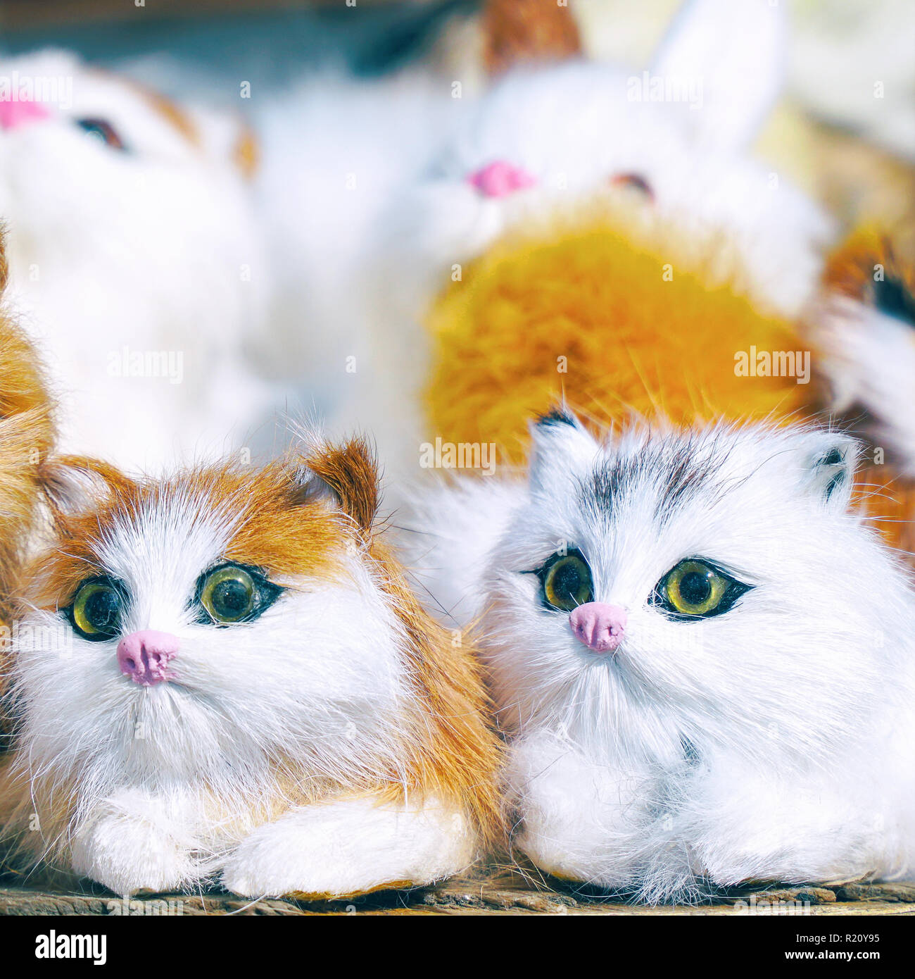 Soft toys kittens sitting in front of camera Stock Photo