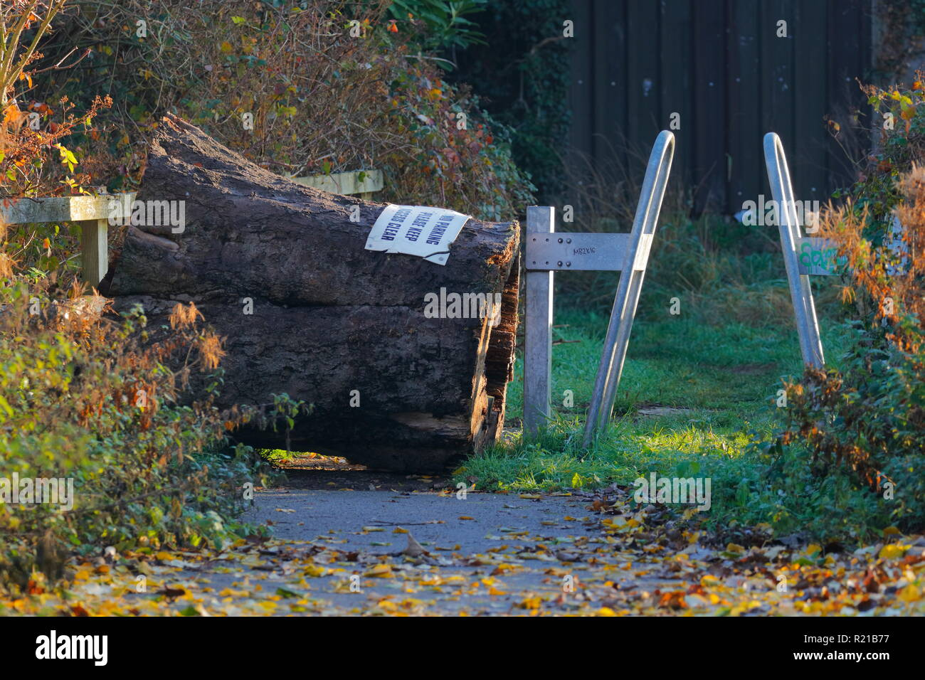 A tree stump is used to block off a gap in a footpath to prevent motorcyclists from using the footpath. Stock Photo