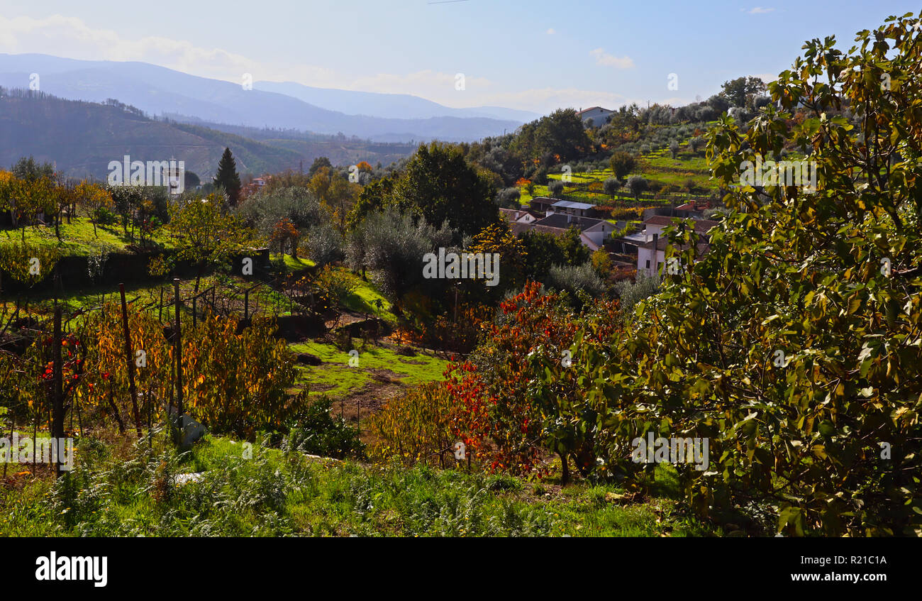 A morning capture of an Autumnal view across Barril de Alva in Central Portugal. - Stock Image
