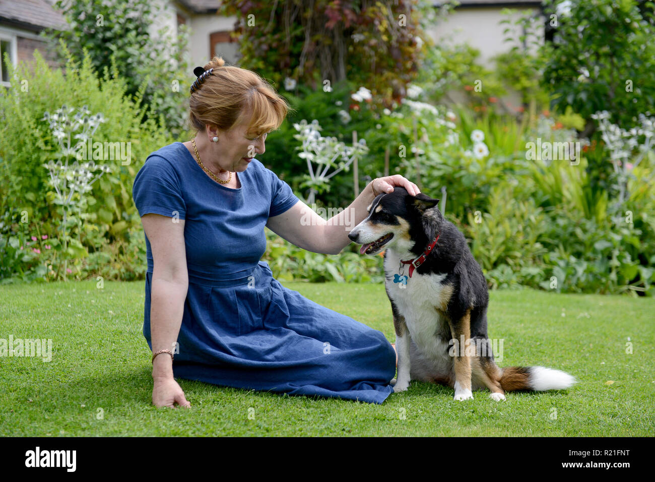 Woman with pet pets dog dogs - Stock Image