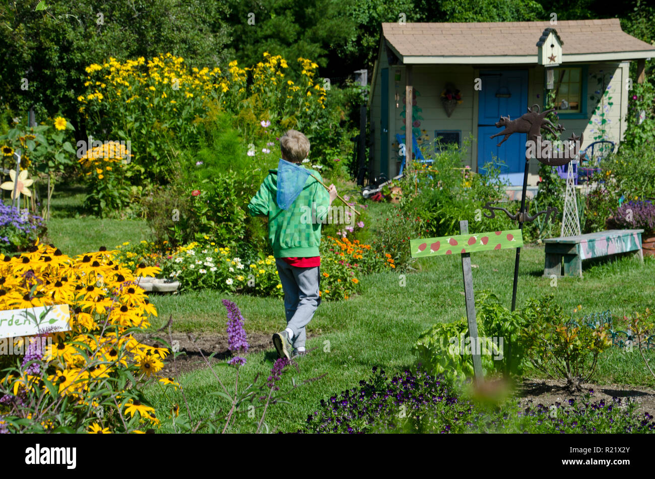 Young boy in colorful community garden with buttefly net on the hunt, Yarmouth, ME, USA - Stock Image