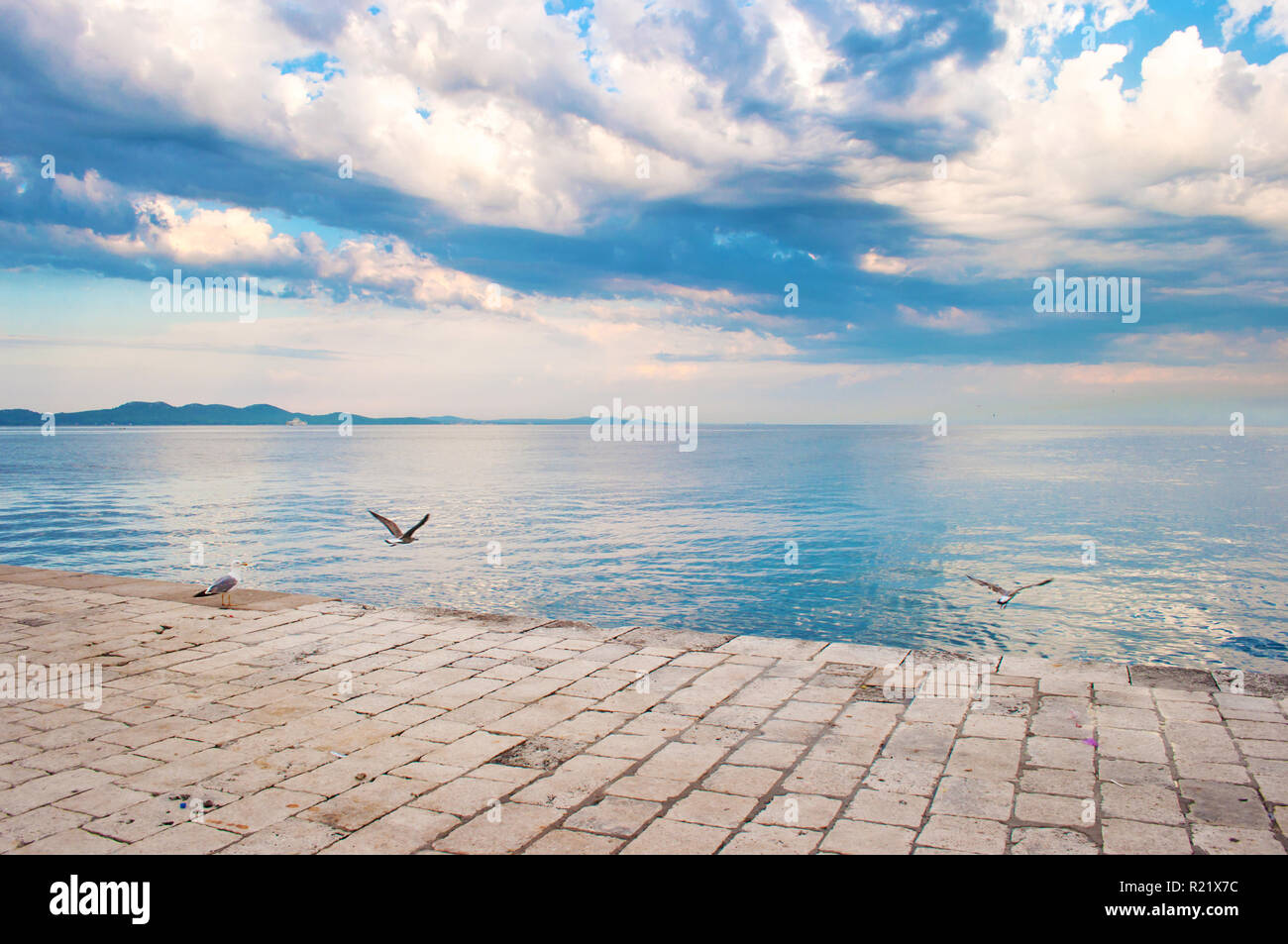 Seagulls flying low above stone tiles pavement near the sea shore against the background of a hill range and dramatic cloudy morning sky. Zadar, Croat - Stock Image