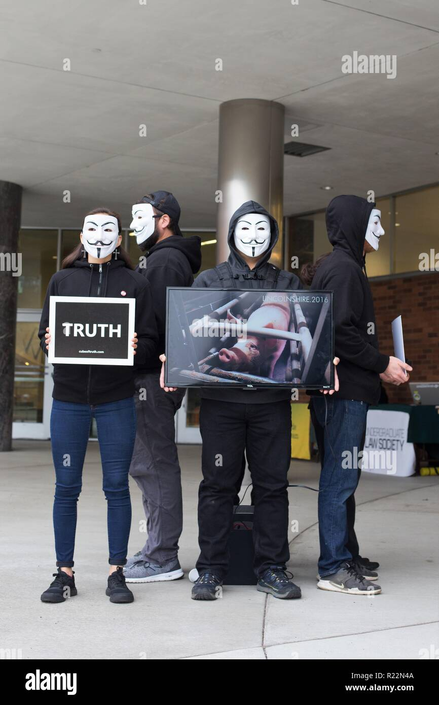Vegan activists form a 'cube of truth' at the University of Oregon in Eugene, Oregon, USA. - Stock Image