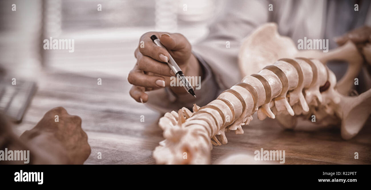 Doctor explaining anatomical spine to patient - Stock Image