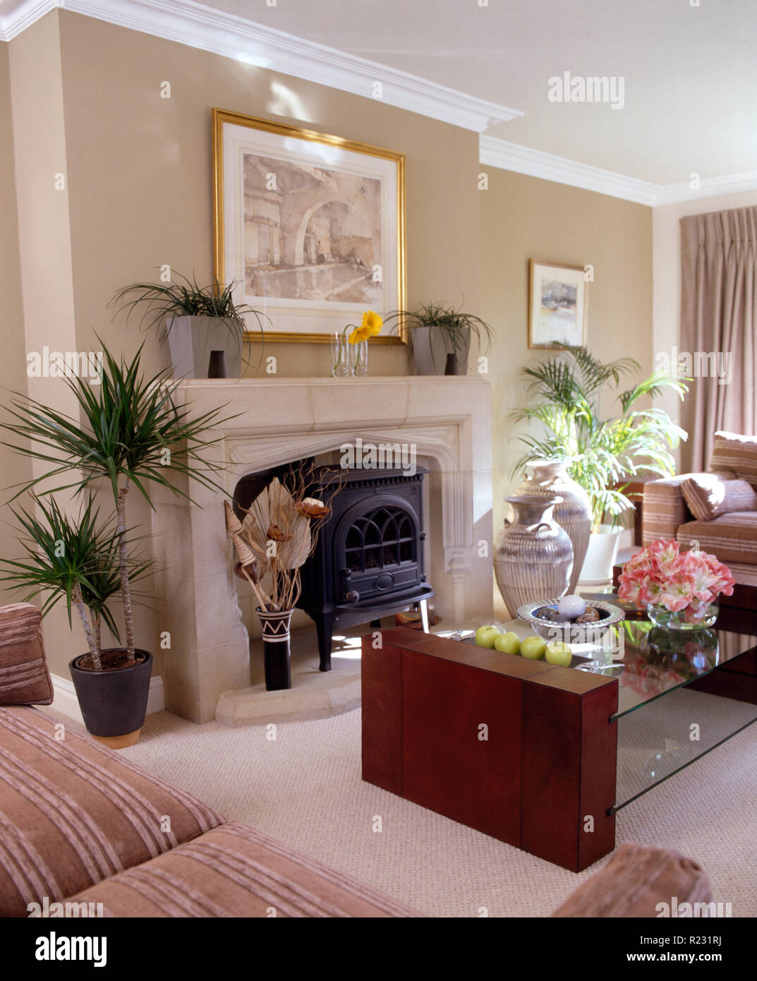 Houseplants either side of a stone fireplace with a wood burning stove in a townhouse living room with a glass topped coffee table - Stock Image