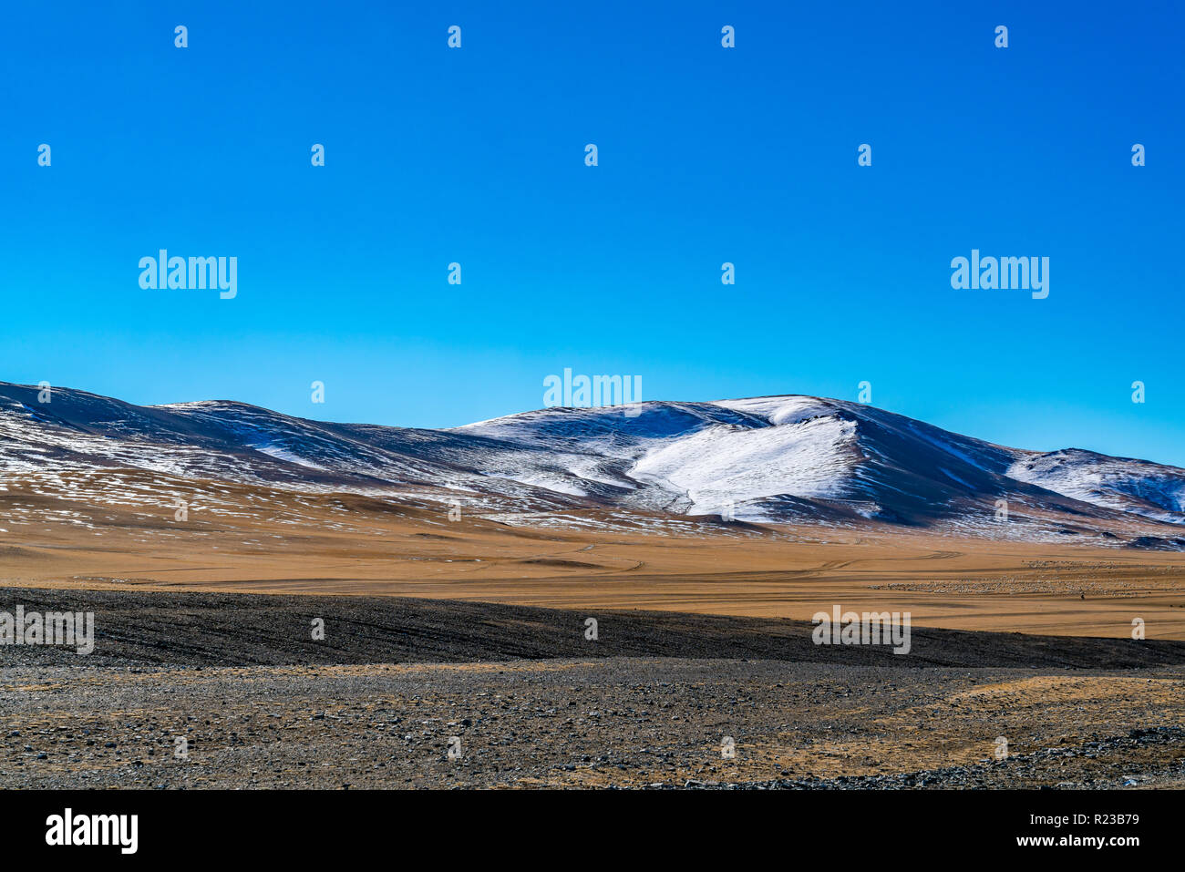 View of snow mountain against the blue sky and the steppe in Ulgii, Mongolia Stock Photo