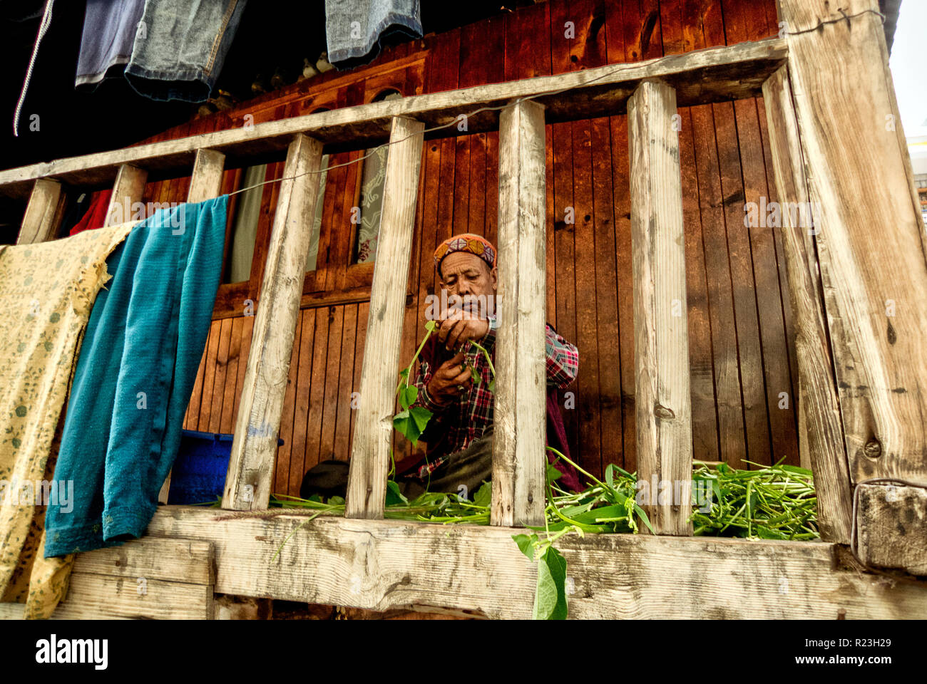 India, Himachal Pradesh, Vashist, 08/11/2010: a man selects vegetables to eat on the balcony of a traditional vashist house - Stock Image